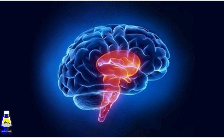 سکته مغزی چیست؟ انواع و علت آن