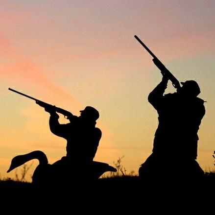 شکارچی کل های وحشی در لنده ۵۰ میلیون تومان جریمه شد