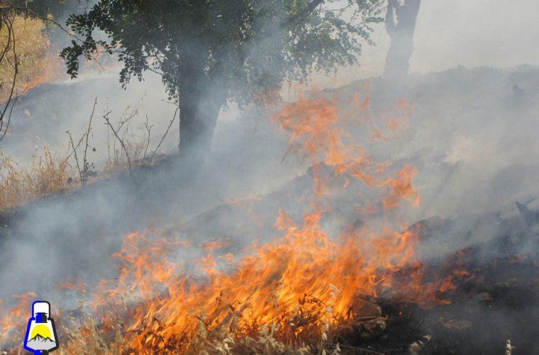 مهار آتش سوزی در منطقه حفاظت شده کوه دیل