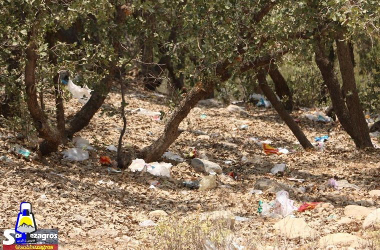 پارک جنگلی یاسوج در محاصره زباله ها/تصاویر